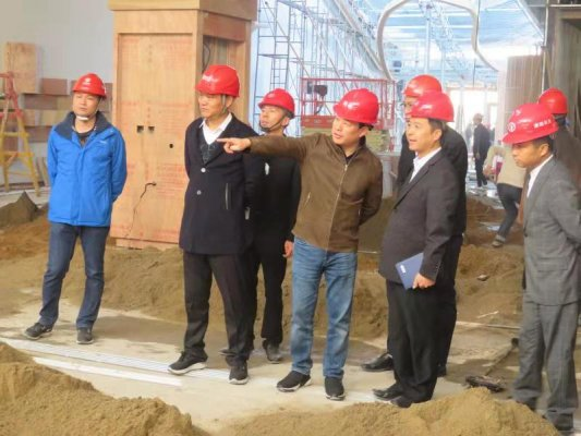 谢子龙董事长点赞raybet公司:项目抓得好!